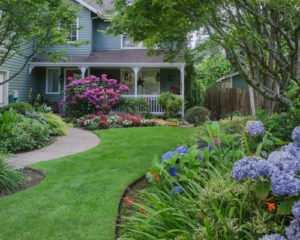 Landscaping Services